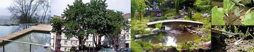 Umgebungspflege Gartenpflege Umgebungsgestaltung Gartengestaltung Private- & Gewerbe-Liegenschaften Liegenschaft Service Umschwungpflege Unterhaltsarbeiten